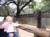 Zoo03150617